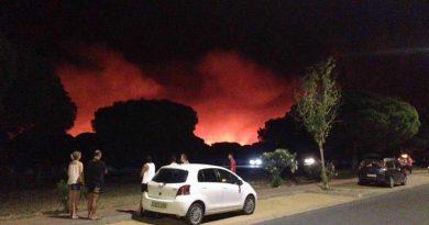 Imágenes del incendio originado en Moguer (Huelva) y que afecta al Parque Natural de Doñana./ Facebook Ayuntamiento de Moguer.